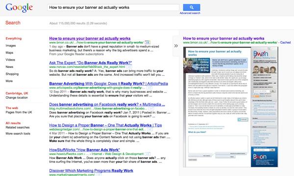 Google preview of BMON site