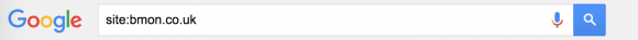Google single domain site search