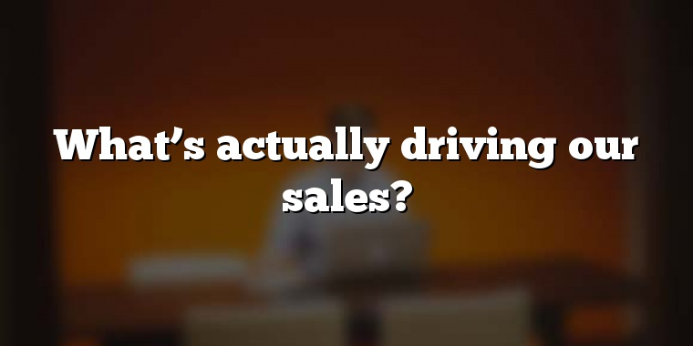What's actually driving our sales?